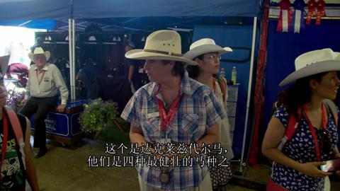 Episode Twenty Five – Calgary Stampede (Mandarin)