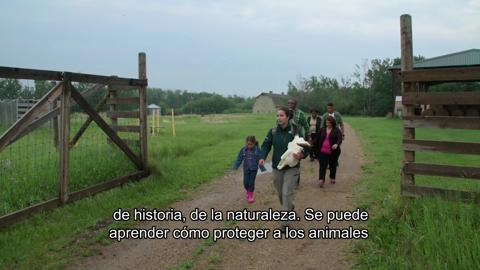 Episode Twenty – Elk Island National Park (Spanish)