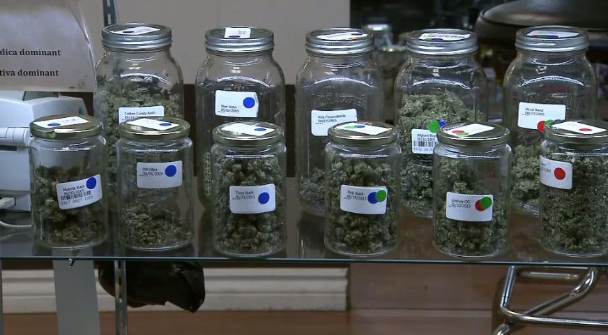 大麻組織對大麻合法化時間表不樂觀 – MAR 28, 2017 (BC)