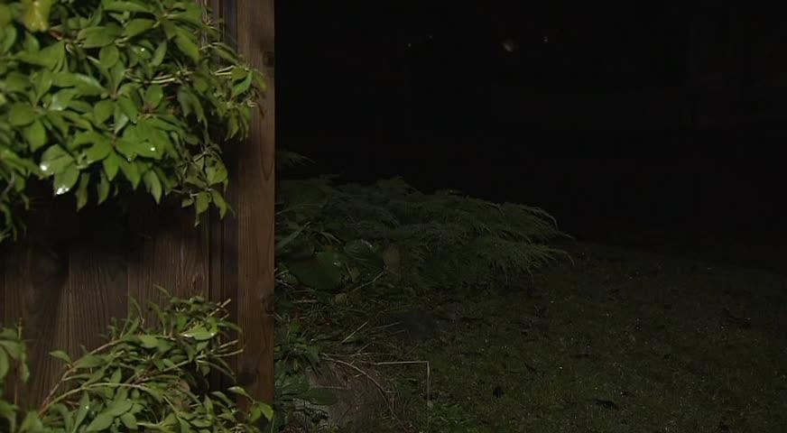 素里性侵案件频发,又一名女子报警-NOV 21, 2017 (BC)
